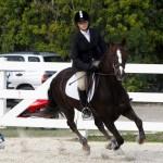 Inwood Hunter Jumper Show Horses Bermuda Equestrian, November 25 2012 (49)