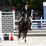 Inwood Hunter Jumper Show Horses Bermuda Equestrian, November 25 2012 (51)