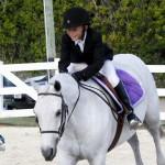 Inwood Hunter Jumper Show Horses Bermuda Equestrian, November 25 2012 (6)