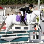 Inwood Hunter Jumper Show Horses Bermuda Equestrian, November 25 2012 (7)