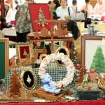 Home-Grown Alternatives Craft Show Bermuda, December 1 2012 (125)