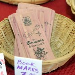 Home-Grown Alternatives Craft Show Bermuda, December 1 2012 (33)