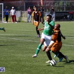 BAA Defeats Devonshire Colts Football Soccer Bermuda January 6 2013 (11)