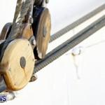 Training Tall Ship Christian Radich, St George's Bermuda, January 15 2013 (16)