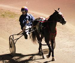 horse130125
