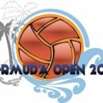 BDA-Open-2013-Logo-300x216