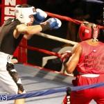 Teresa Perozzi vs Tori Sho Nuff Nelson Fight Night 15 The Rematch Berkeley Institute Bermuda, February 2 2013  (15)