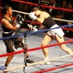 Teresa Perozzi vs Tori Sho Nuff Nelson Fight Night 15 The Rematch Berkeley Institute Bermuda, February 2 2013  (21)
