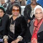 Throne Speech, Bermuda February 8 2013 (19)