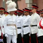 Throne Speech, Bermuda February 8 2013 (43)