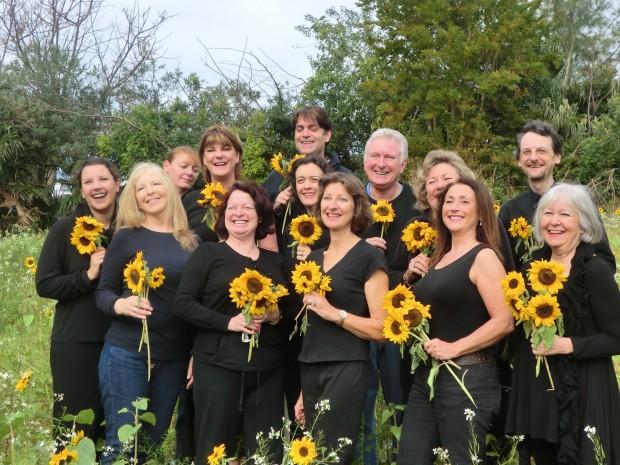 Cast Sunflower Field AH 2