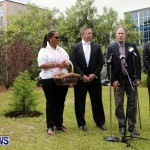 Earth Day Tree Planting, Bermuda April 22 2013 (2)