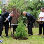 Earth Day Tree Planting, Bermuda April 22 2013 (7)