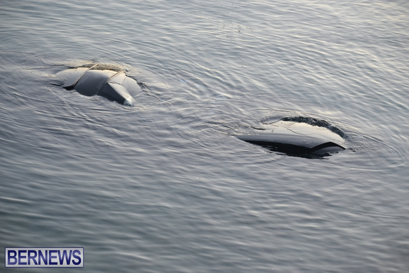 Car-Overboard-Bermuda-May-16-2013-8