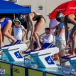 National Swimming Championships Bermuda, June 9 2013-1