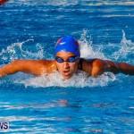 National Swimming Championships Bermuda, June 9 2013-12