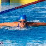 National Swimming Championships Bermuda, June 9 2013-14