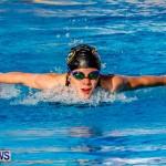 National Swimming Championships Bermuda, June 9 2013-2