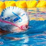 National Swimming Championships Bermuda, June 9 2013-38
