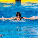 National Swimming Championships Bermuda, June 9 2013-4