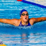 National Swimming Championships Bermuda, June 9 2013-5