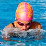 National Swimming Championships Bermuda, June 9 2013-50