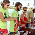 Groundswell Lionfish Tournament Bermuda, July 20 2013-14