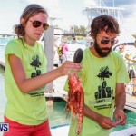 Groundswell Lionfish Tournament Bermuda, July 20 2013-17
