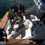 =fishing july 4 2013 (11)
