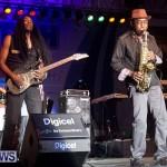 2013 beres hammond concert bermuda dismont (22)