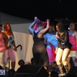 Cup Match Salute Shabba Ranks Alison Hinds Bermuda, July 31 2013 (36)