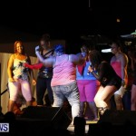 Cup Match Salute Shabba Ranks Alison Hinds Bermuda, July 31 2013 (38)