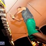 soca vs reggae 2013 bermuda (18)