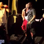 soca vs reggae 2013 bermuda (19)