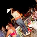 soca vs reggae 2013 bermuda (24)