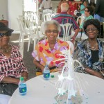 Bermuda HealthCare Services Open House September 2013 (27)