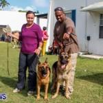 Bermuda Kennel Club BKC Dog Show, October 19, 2013-57