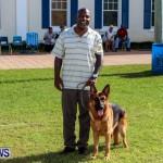 Bermuda Kennel Club BKC Dog Show, October 19, 2013-84