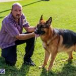 Bermuda Kennel Club BKC Dog Show, October 19, 2013-93