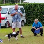SPCA Fun Fair Bermuda, October 12, 2013-14