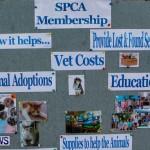 SPCA Fun Fair Bermuda, October 12, 2013-50
