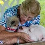 SPCA Fun Fair Bermuda, October 12, 2013-65