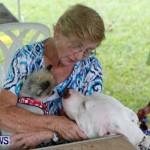 SPCA Fun Fair Bermuda, October 12, 2013-66