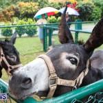 SPCA Fun Fair Bermuda, October 12, 2013-72
