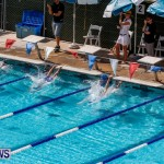 Sharks Sprint Swim Meet Bermuda, October 19, 2013-10
