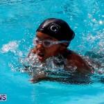 Sharks Sprint Swim Meet Bermuda, October 19, 2013-12