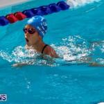 Sharks Sprint Swim Meet Bermuda, October 19, 2013-14
