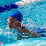 Sharks Sprint Swim Meet Bermuda, October 19, 2013-16