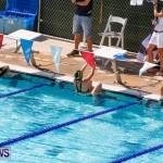 Sharks Sprint Swim Meet Bermuda, October 19, 2013-20