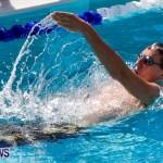 Sharks Sprint Swim Meet Bermuda, October 19, 2013-23